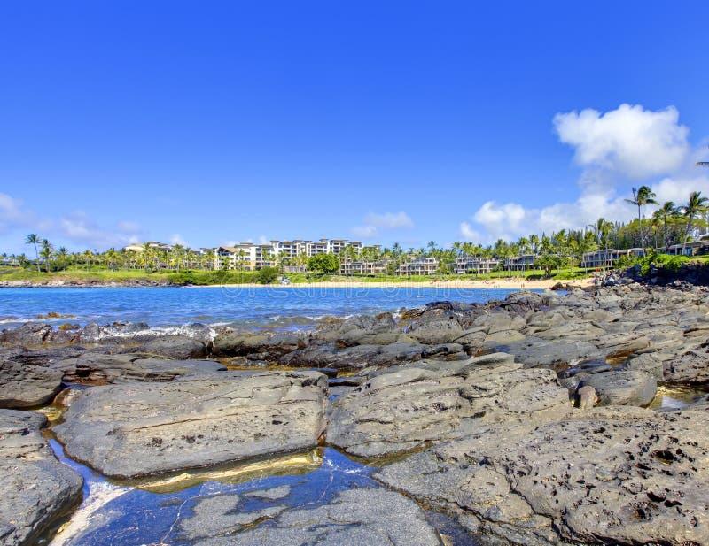De lavastrand van Maui van het eiland met toevlucht royalty-vrije stock afbeelding