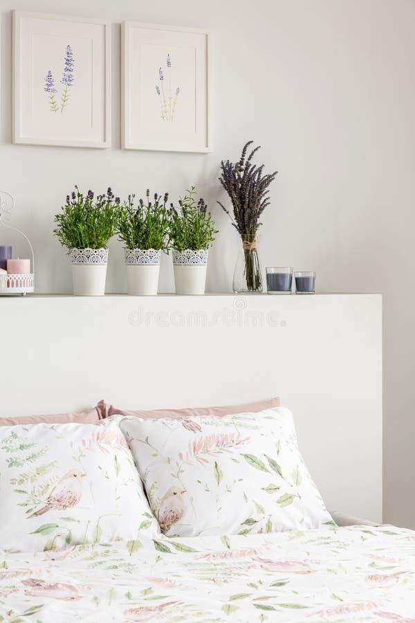 De lavendel bloeit op hoofdeinde van bed met hoofdkussens in wit slaapkamerbinnenland met affiches Echte foto royalty-vrije stock foto's