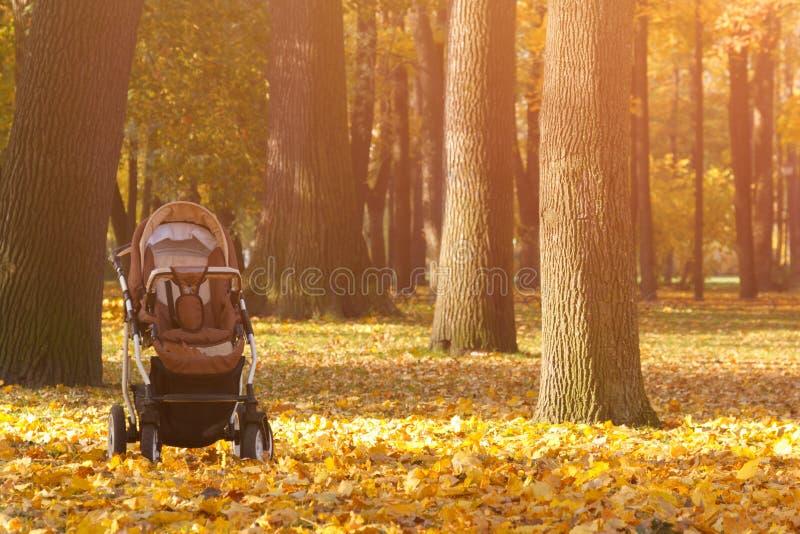 De lege Babywandelwagen bevindt zich onder de gele bladeren op de achtergrond van het de herfstpark in de zon stock fotografie