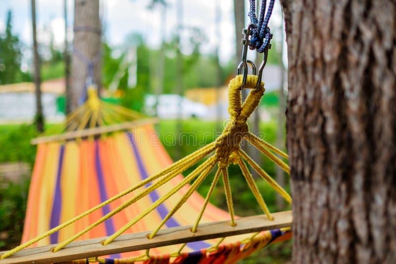 De lege hangmat in groene bos niemand rust daarin royalty-vrije stock fotografie