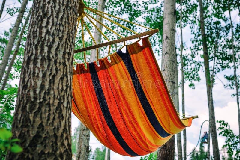 De lege hangmat in groene bos niemand rust daarin stock foto