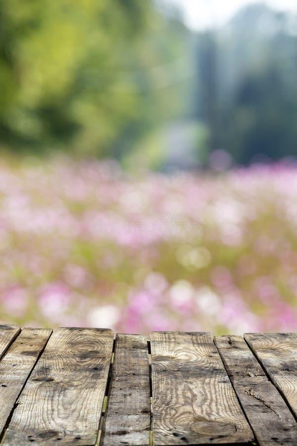 De lege het terrasvloer van het perspectief oude houten balkon met zachte nadruk, kleurrijke kosmos bloeit het bloeien op het geb royalty-vrije stock fotografie