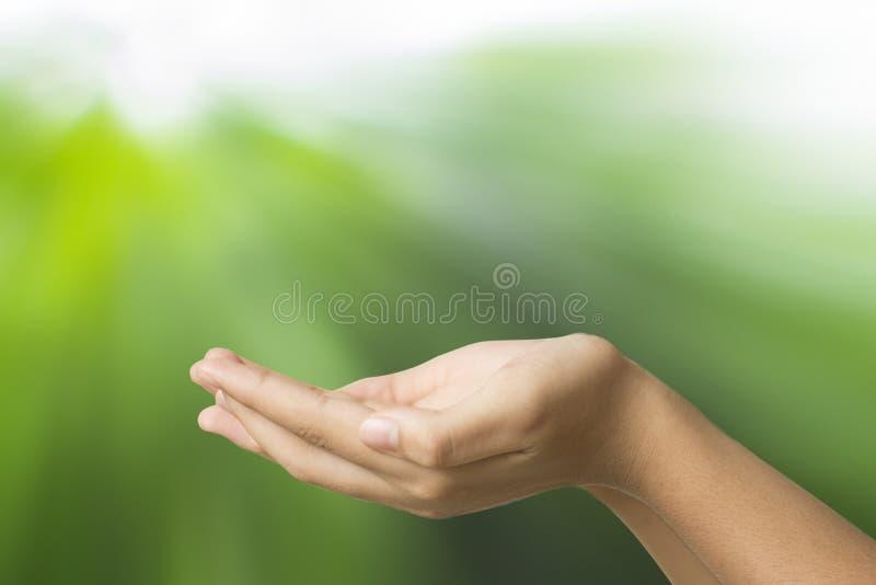 De lege holding van de handvrouw op groene abstactachtergrond stock foto