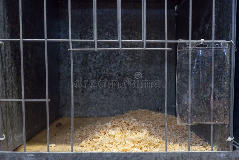 De Lege kooi van het kippenstaal bij een gevogeltelandbouwbedrijf royalty-vrije stock foto's