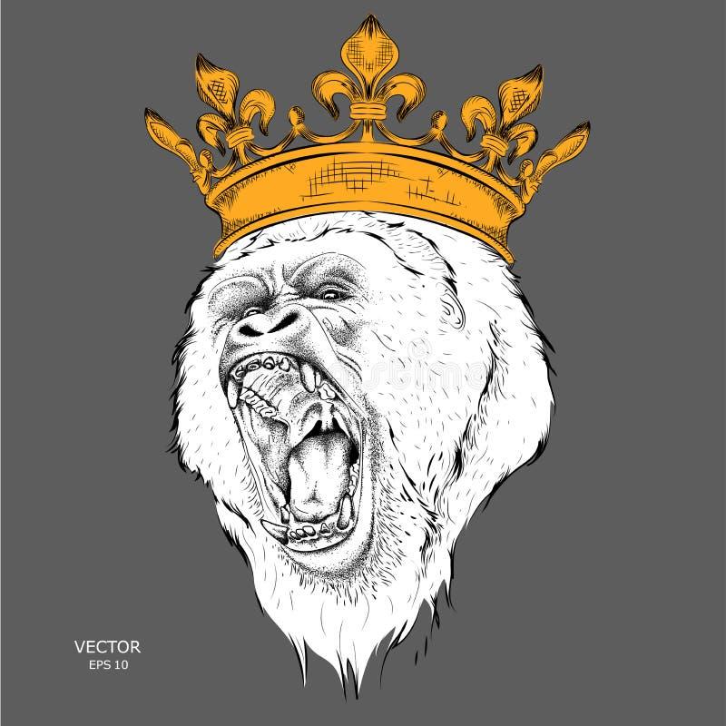 De leider van een pak gorilla's in de gouden kroon Vector illustratie stock illustratie