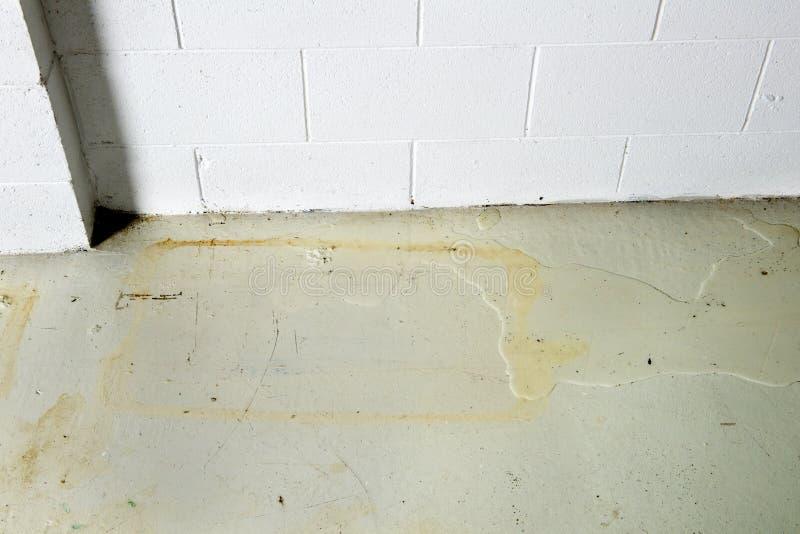De Lekkage van het kelderverdiepingswater door Stichting