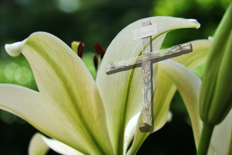 De Lelie van Pasen en het Kruis royalty-vrije stock foto