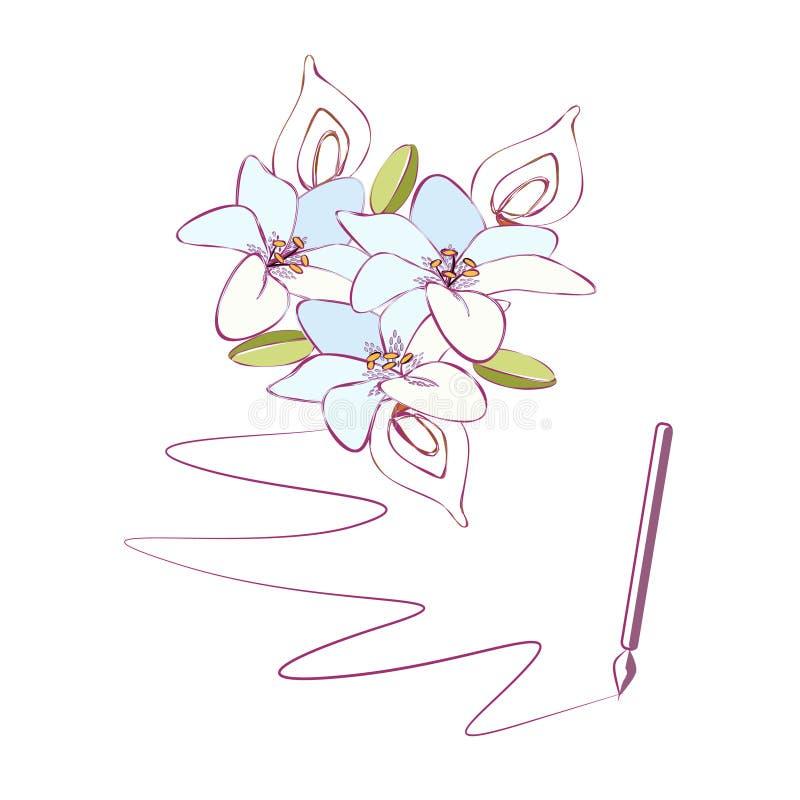 de leliebloemen inkten getrokken overzicht royalty-vrije illustratie