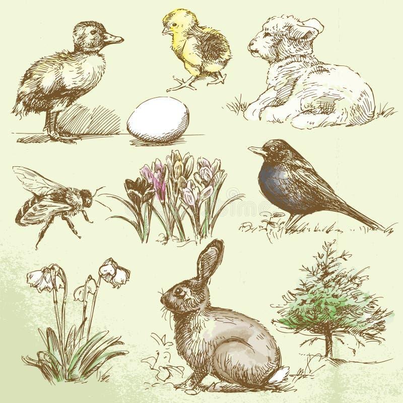 De lente vector illustratie