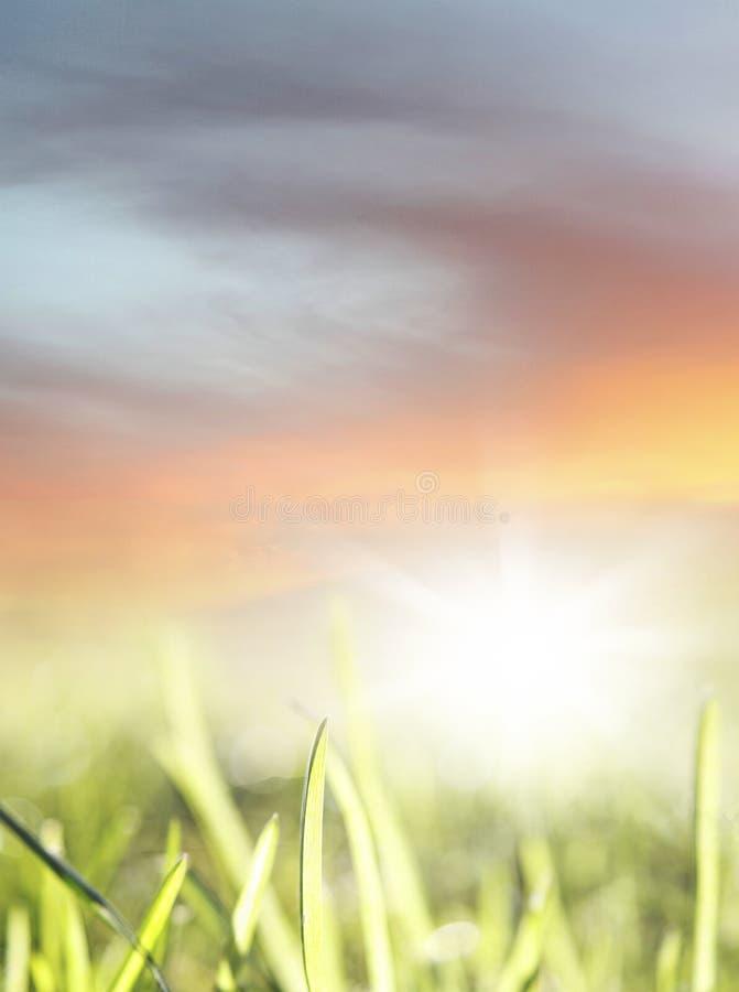 Download De lente stock foto. Afbeelding bestaande uit gebied - 39116480