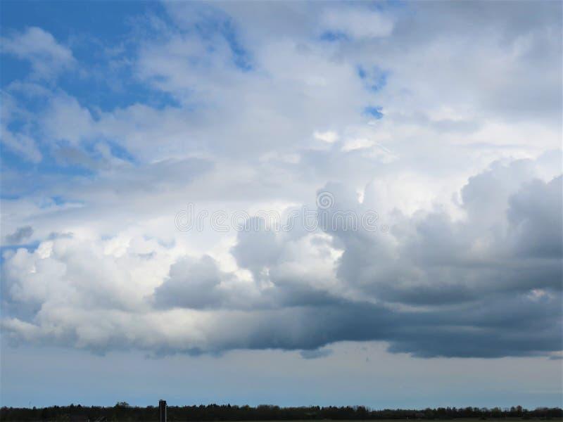 De lente-aard komt aan het leven, blauwe hemel royalty-vrije stock foto's