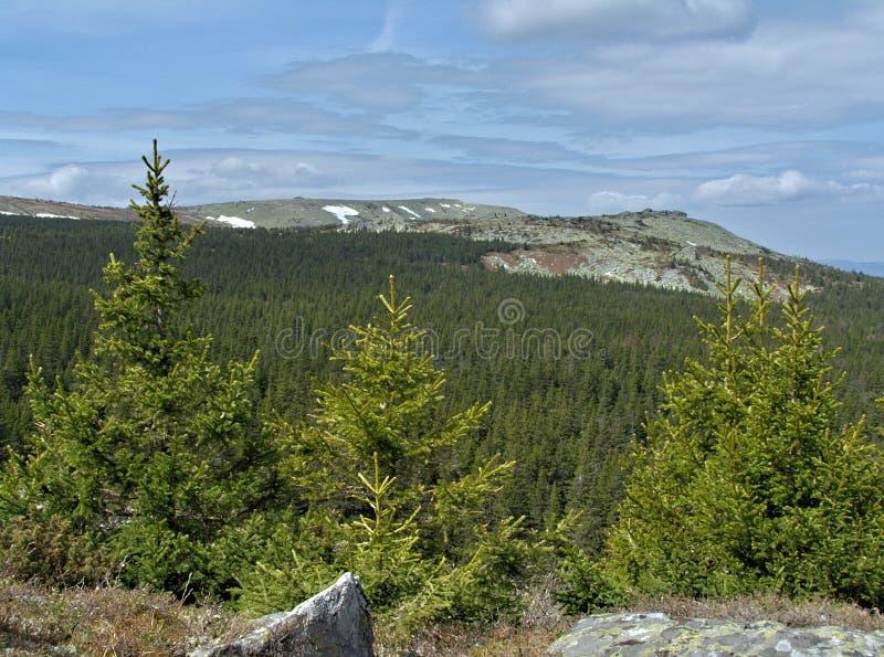 De lente in bergen royalty-vrije stock foto
