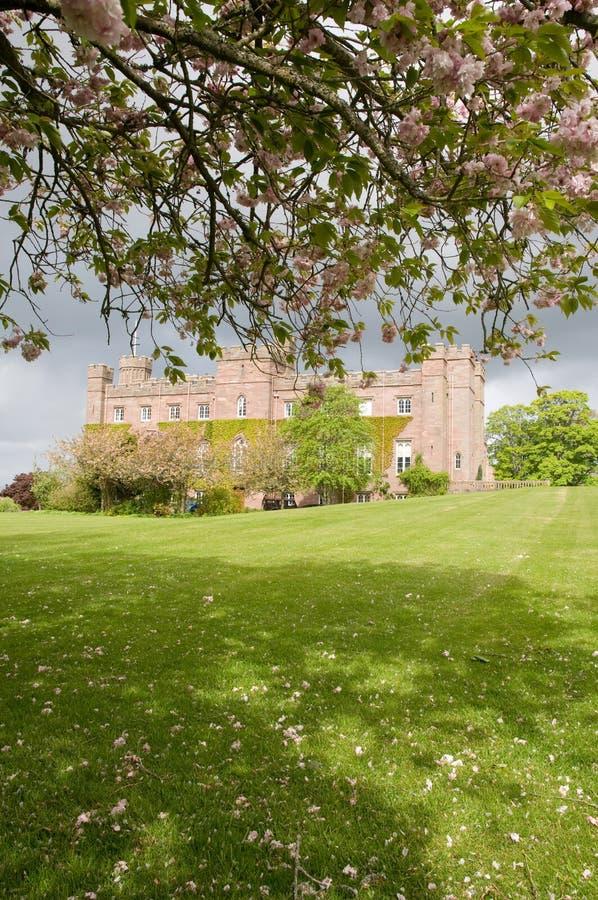 De lente bij het paleis royalty-vrije stock fotografie