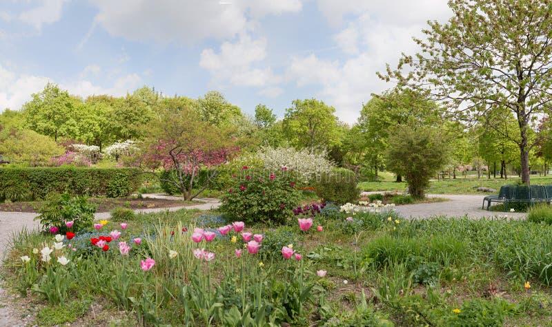 De lente bij stadspark westpark, binnen kan het westen van München stock foto