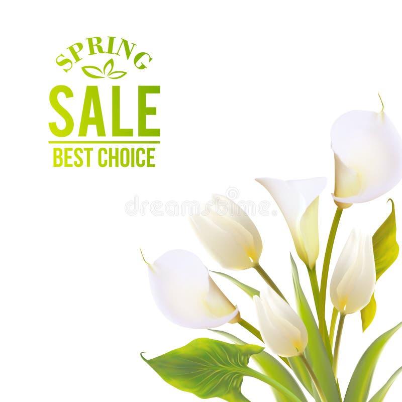 De lente bloeit backround met tekst het van letters voorzien. royalty-vrije illustratie