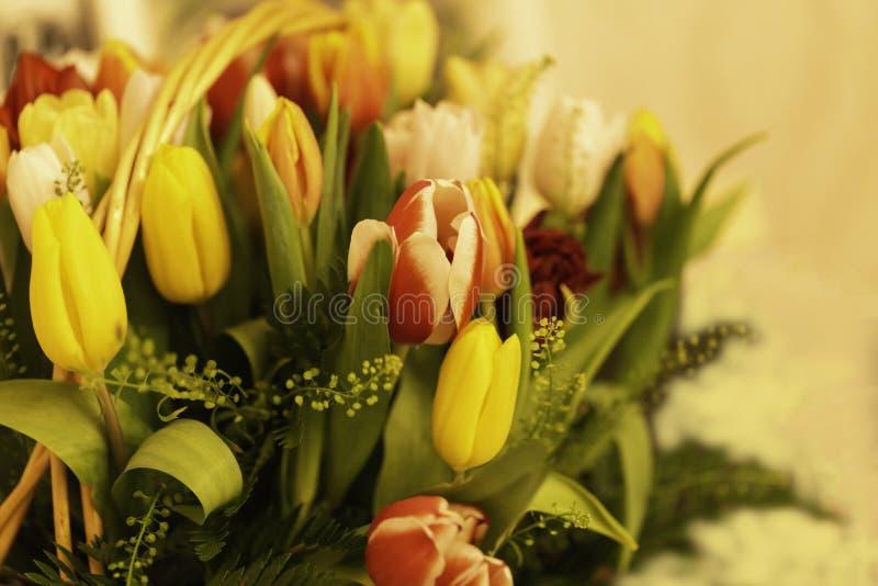 De lente bloeit banner - een boeket van multi-colored tulpen op een beige achtergrond stock foto