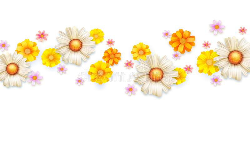 De lente bloemen abstract patroon met knop van de zomerbloemen Reeks wildflowers op wit wordt geïsoleerd dat Madeliefjes, chrysan vector illustratie