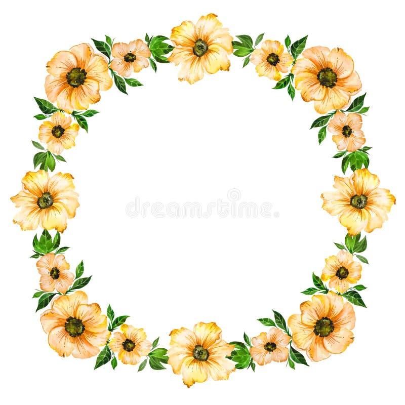 De lente bloemenillustratie Mooie gele bloemen met groene bladeren die kader maken Rond patroon op witte achtergrond stock illustratie