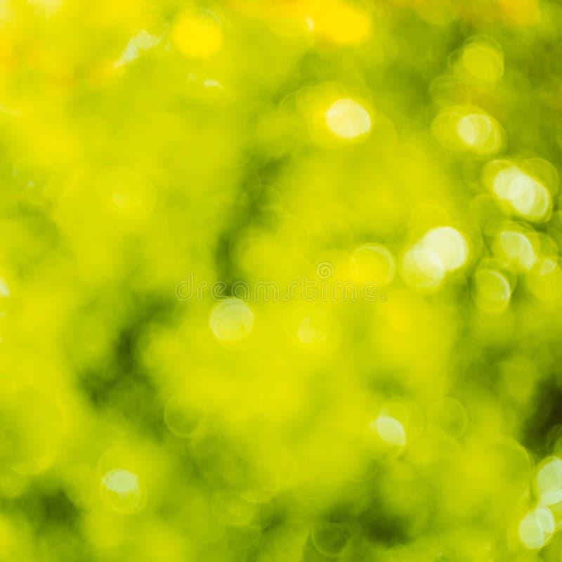 De lente bokeh achtergrond stock foto's