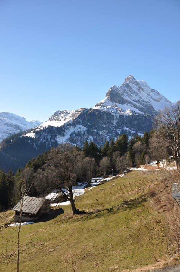 Download De Lente In Braunwald, Zwitserse Het Ski?en Toevlucht Stock Foto - Afbeelding bestaande uit toevlucht, smelting: 29505540