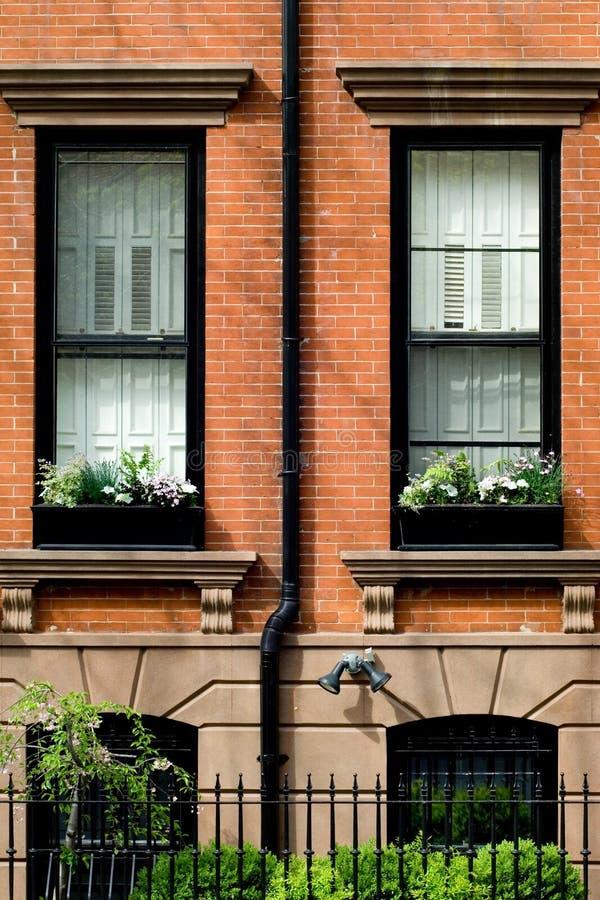 De lente in Brooklyn stock foto
