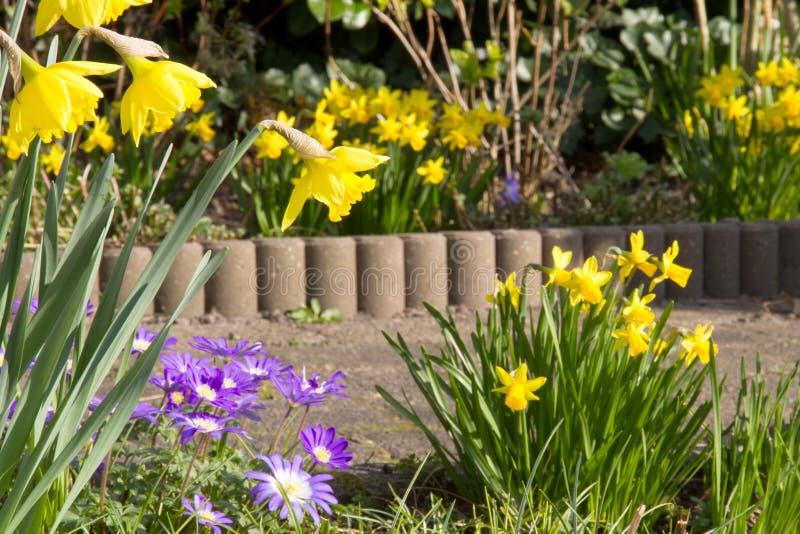 Download De lente in de tuin stock foto. Afbeelding bestaande uit flora - 39102302