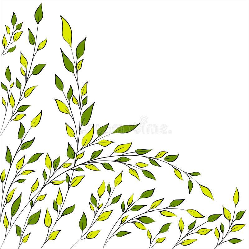 De lente of de zomerboomtakken stock illustratie