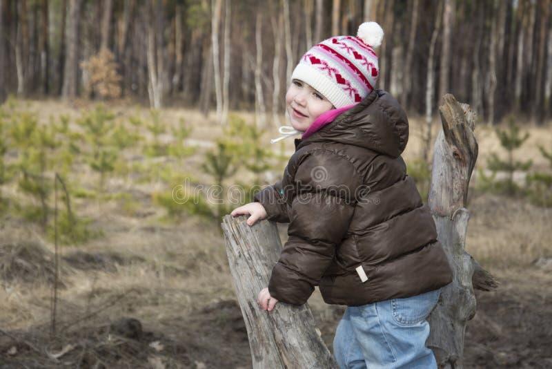 De lente in een zitting van het pijnboom bosmeisje op drijfhout stock afbeeldingen