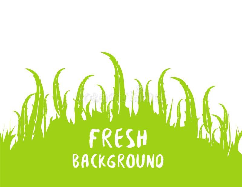 De lente en zomer verse achtergrond Groen silhlouettemalplaatje van de de lenteweide Het patroon van de kalkzomer Vector illustra royalty-vrije illustratie