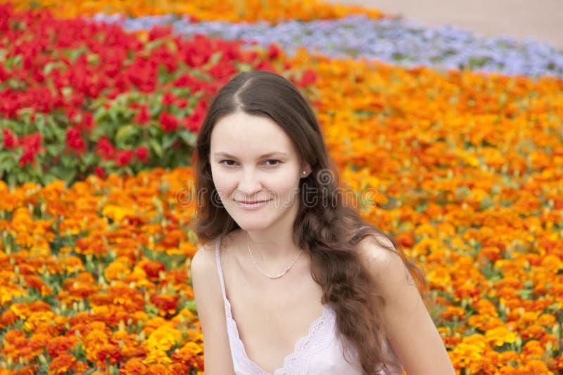 De lente is gekomen royalty-vrije stock fotografie