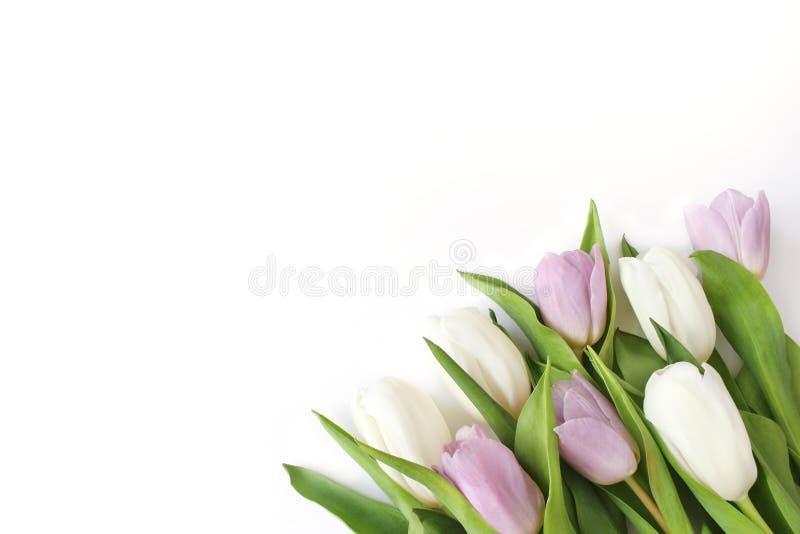 De lente gestileerde voorraadfoto Het Concept van Pasen Vrouwelijke Desktopscène met boeket van witte en violette tulpenbloemen  royalty-vrije stock foto