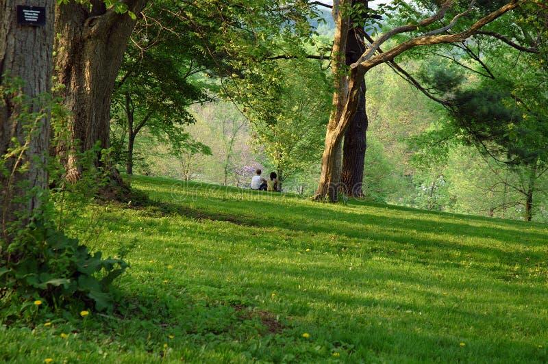 De lente in het Arboretum stock foto