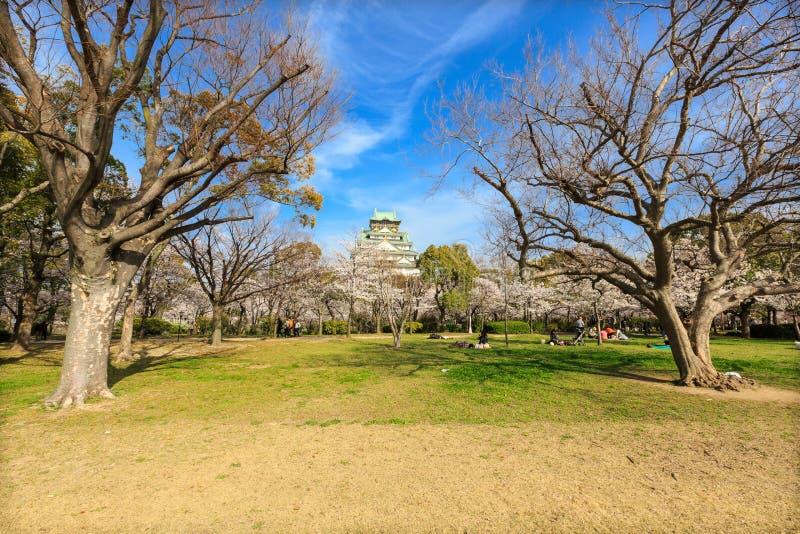 De lente in het kasteel van Osaka stock fotografie