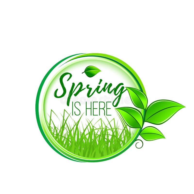 De lente is hier groen blad en gras vectorpictogram vector illustratie
