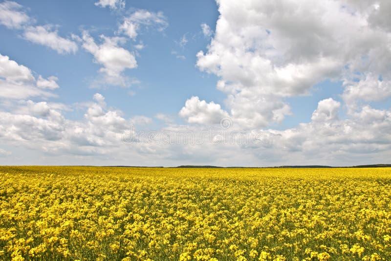 De lente in Hongarije royalty-vrije stock afbeelding