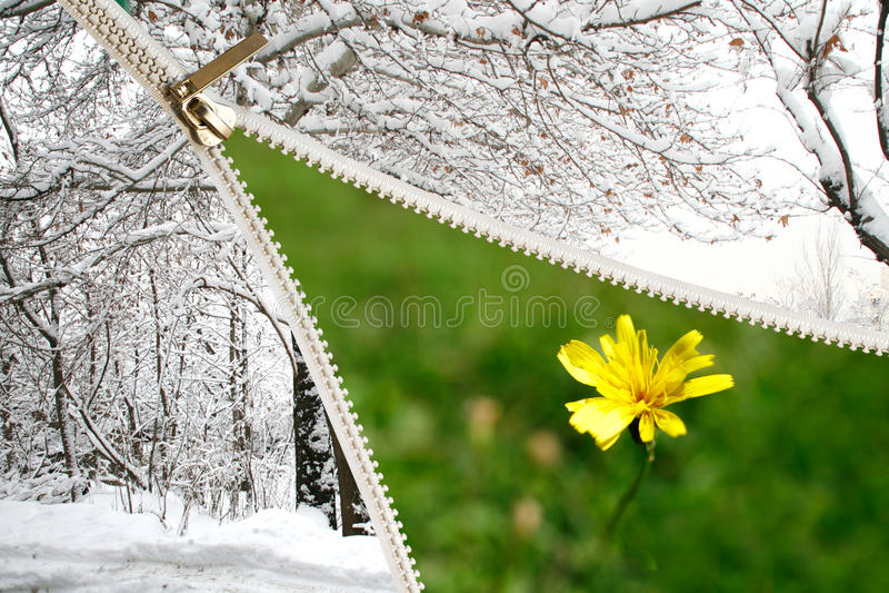 De lente komt royalty-vrije stock fotografie