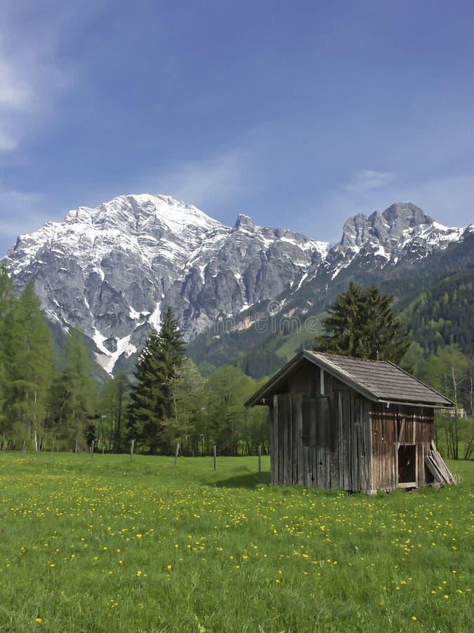 De lente in Lofer-land royalty-vrije stock foto