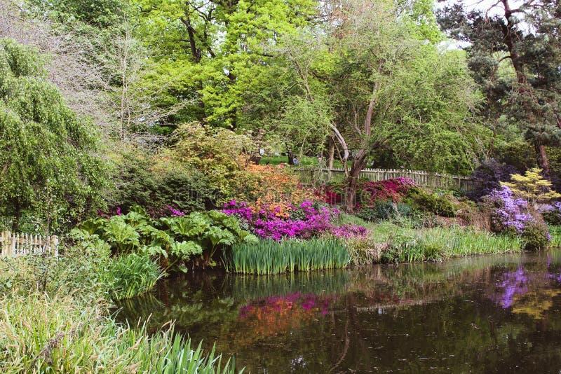 De lente in Londen stock foto's
