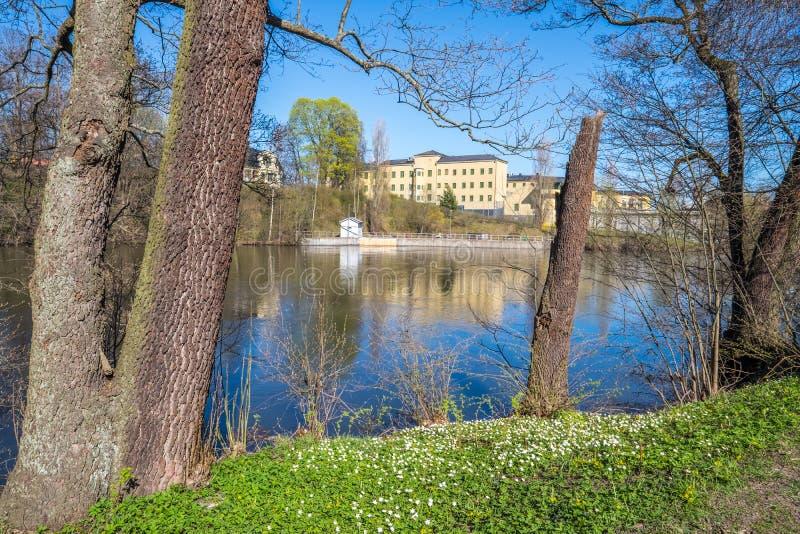 De lente in Norrköping, Zweden stock afbeelding