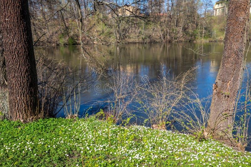 De lente in Norrköping, Zweden royalty-vrije stock afbeeldingen