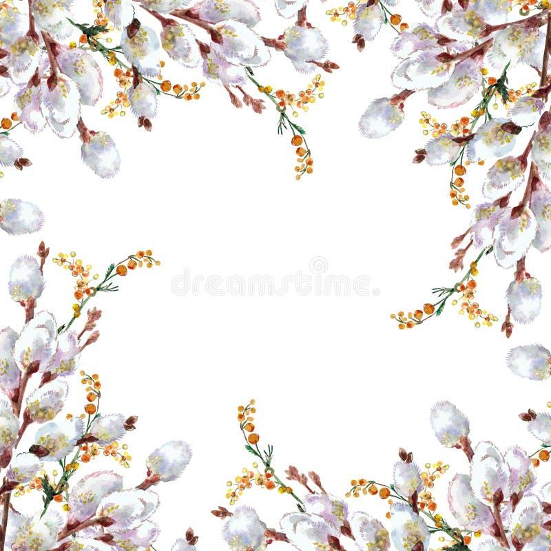 De lente, tot bloei komende pussy-wilg, waterverf stock illustratie