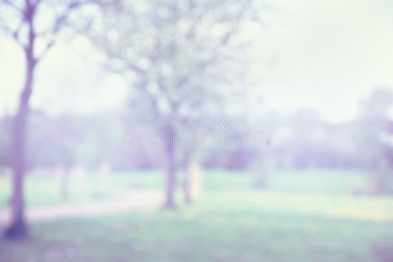 De lente vaag park, aardachtergrond stock fotografie
