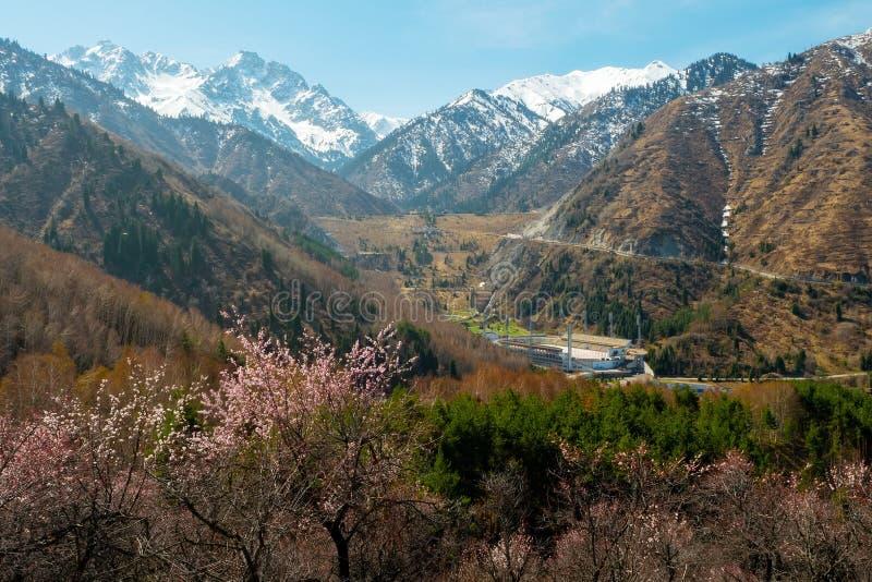 De lente in de vallei van Medeo De berglandschap van de lente royalty-vrije stock fotografie