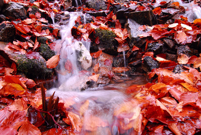 De Lente van de herfst stock afbeeldingen