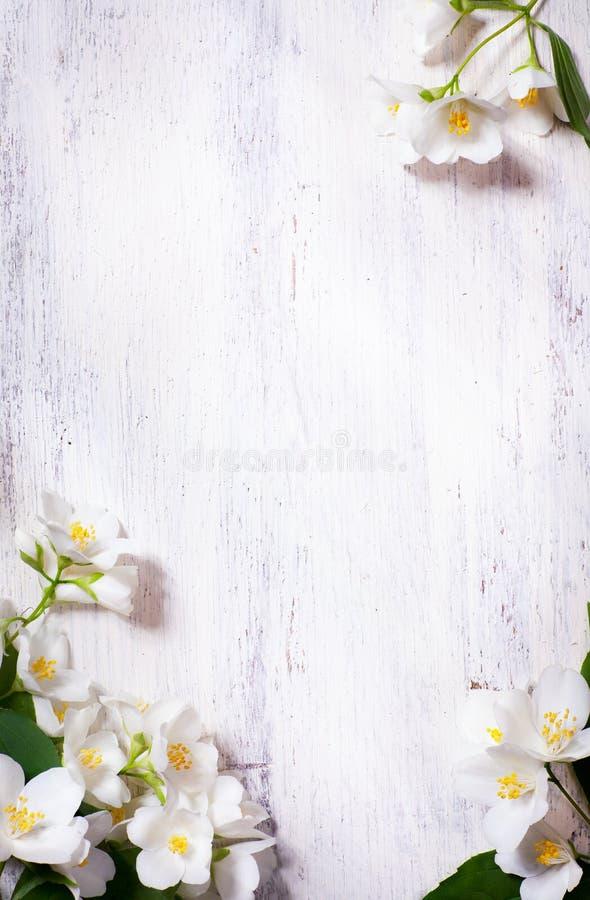 De lente van de kunst bloeit frame op oude houten achtergrond stock foto's