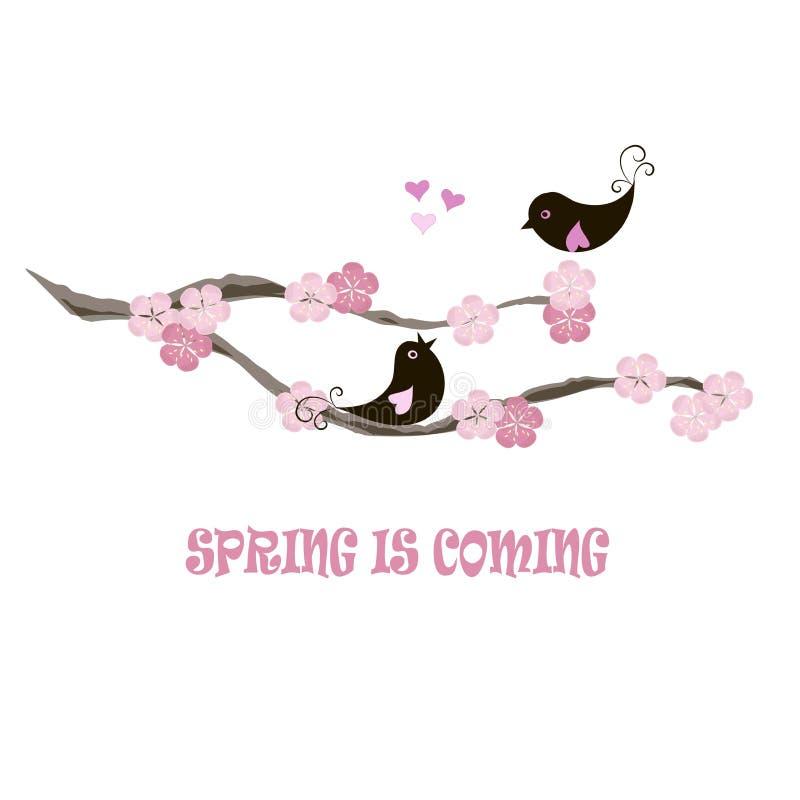 De Lente van de typografiebanner komt, zwarte vogels op bloeiende tak, roze bloemen, harten op wit stock illustratie