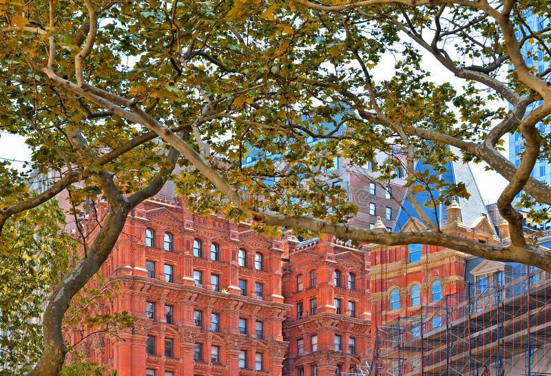 de lente van New York met groene bladeren en klassieke en moderne architectuur in het lagere financiële district van Manhattan me royalty-vrije stock afbeelding