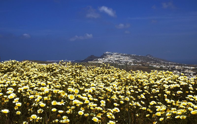 De lente van Santorini stock fotografie