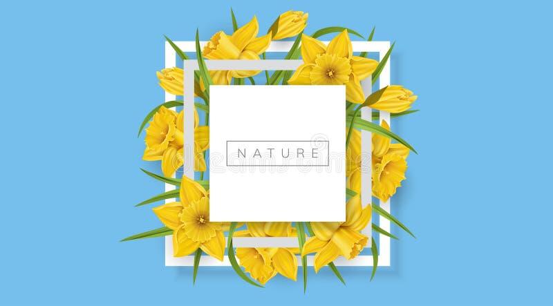 De lente vierkant kader met gele gele narcisbloem stock illustratie