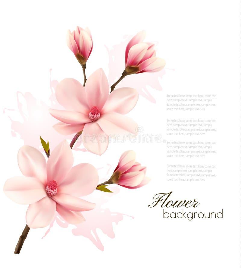 De lenteachtergrond met bloesembrunch van roze bloemen I stock illustratie